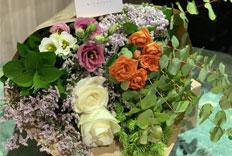 rosas ecobox